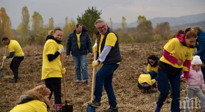 Засадиха 6200 дръвчета край София