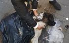 ЗВЕРСТВО В ПАЗАРДЖИК! Изрод отрови 6 кучета, 4 от тях още се борят