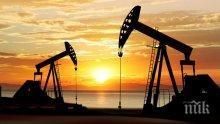 Цената на петрола на световните пазари се срина с почти 5%