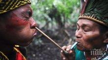 Племена в Амазония разкриват тайната на дългия живот