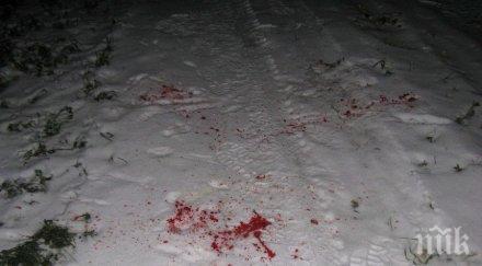 В СЕВЕРОЗАПАДА: Пияна шофьорка уби пешеходец