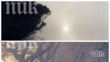 ВНИМАВАЙТЕ: Времето обещава слънце, но и мъгли