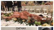"""След сигнал на ПИК: """"Антимафия"""" погва """"голямото плюскане"""" в Двореца. Ще разследват културния октопод и съпричастни ли са към него министри и кметове"""