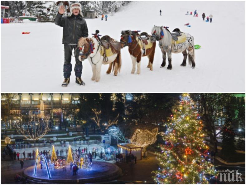 ПРАЗНИЧНА ЕУФОРИЯ: Синоптици разкриха какво ще е времето за Коледа и Нова година - ще има ли сняг и какви ще са температурите