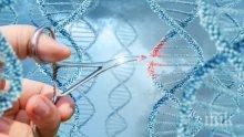 """Учени от """"Харвард"""" също поискаха да редактират човешки геном"""