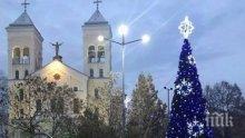 Коледната елха грейна и в Раковски