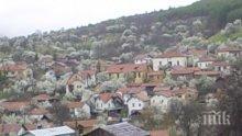 Започва проучване за добив на злато в Кюстендилско