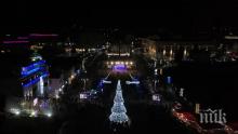 Коледната елха в Бургас грейва на големия концерт за Никулден