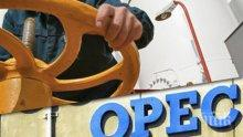 ОПЕК се събира, ще вдига цената на петрола