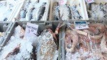 """АКЦИЯ """"НИКУЛДЕН"""": Проверяват търговците на риба"""