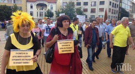 Пчелари излизат на протест, искат държавно подпомагане