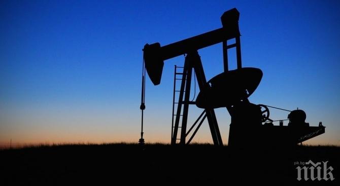 Страните от ОПЕК не се договориха за съкращаване на добива на петрол