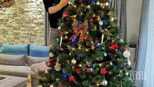 Краси Аврамов украси елхата