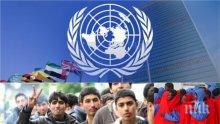 Експерт алармира: Пактът на ООН за миграцията ще доведе до отказ от националния суверенитет, ограничава сериозно и свободата на словото