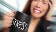 БОЛНИ ЛИ СТЕ? Проверете убива ли ви стресът