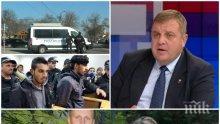 САМО В ПИК! Каракачанов гневен: Не циганите, а българите са дискриминирани - дълги години са подложени на безогледен терор, убийства на момичета и изнасилвания на старици....