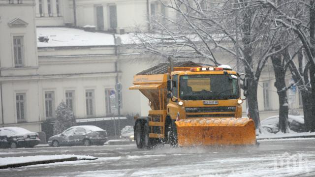 181 снегорина лъснаха София