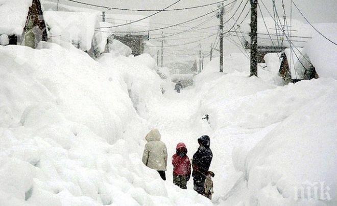 Извънредно положение в Сърбия заради снега