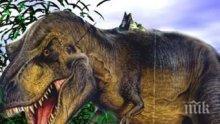 ЗАГАДКАТА Е РАЗРЕШЕНА: Най-големият тиранозавър загинал в река, пълна с дребни акули