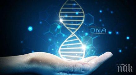 С променено ДНК: Властите в Китай потвърдиха факта на раждане на генетично модифицирани деца
