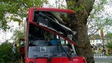 ОТ ПОСЛЕДНИТЕ МИНУТИ: Автобус на градския транспорт се заби в дърво