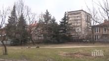 В Хасково излизат на протест срещу строеж в парк
