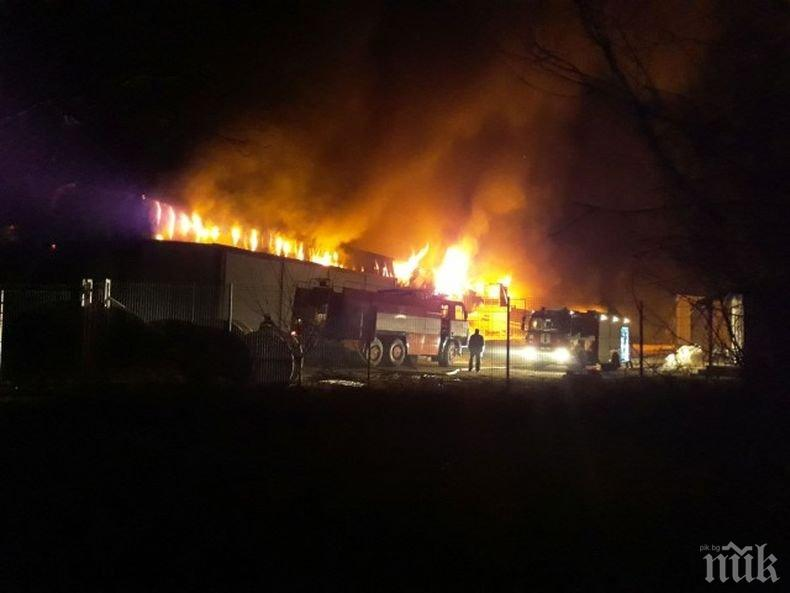 200 прасета оцеляха при адския пожар във Войводиново, работници плачат пред фабриката