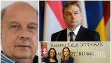 САМО В ПИК! Депутатът Георги Марков с гореща прогноза за евроизборите: Орбан ще е №1, България трябва да копира неговия модел срещу мигрантите и за раждаемостта