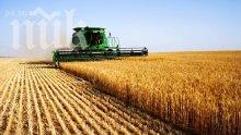 България получава 4 пъти повече пари за земеделие от Брюксел