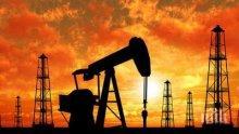 Петролът с нови ценови върхове за 2019 г.