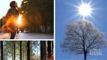 СЛЪНЧЕВ ФЕВРУАРИ: Слънцето ще грее обилно, температурите ще се понижат леко