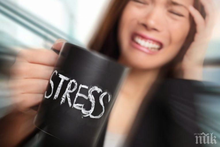 Фитнес, хранене и стрес | bb-team.