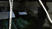 СПЕЦОПЕРАЦИЯ В СОФИЯ: Ченгета откриха високотехнологична наркооранжерия под земята (СНИМКИ/ВИДЕО)