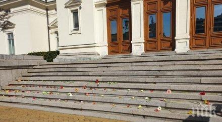 ПЪРВО В ПИК TV: На връх 8-ми март жени окупираха парламента с цветя срещу домашното насилие (СНИМКИ)