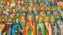 """ПОЧИТ: Честваме паметта на преподобните отци, избити в манастира """"Свети Сава"""""""