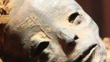 МИСТЕРИЯ: Откриха мумия на извънземно в Египет! Хуманоидът е погребан с големи почести