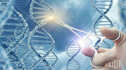 Експерти: Редактирането на гени с репродуктивни цели е безотговорно