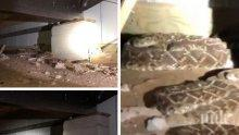 Шокираща находка: Американец опита да оправи телевизионен кабел, минаващ под къщата му, и попадна на...