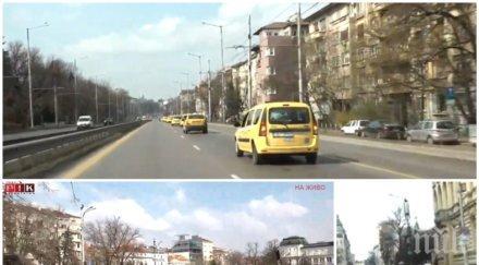 """ИЗВЪНРЕДНО В ПИК TV! Такситата излязоха на протест - над 600 жълти коли задръстиха площад """"Александър Невски"""" (ОБНОВЕНА/СНИМКИ)"""