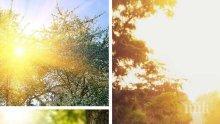 ХУБАВО ВРЕМЕ: Април започва с много слънце, температурите скачат до 23 градуса