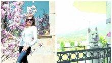 ПЪРВО В ПИК TV: Николина Ангелкова отвръща на удара за имотите си - голямата къща била на родителите на съпруга й от 2006 г., снимала се там, докато била на гости (ОБНОВЕНА)
