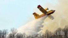 След барбекю: Глобиха по 13.5 млн. евро студенти, предизвикали горски пожар