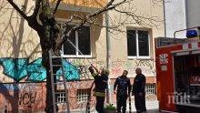 Огнеборци гасиха подпалено дърво пред жилищна кооперация в центъра на София (СНИМКИ)