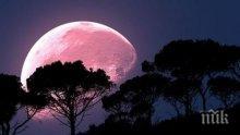 ДО МИНУТИ: Настъпва розовото пълнолуние - ден за ново начало