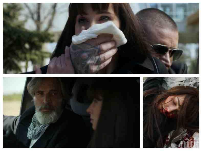 """МРЕЖАТА ИЗБУХНА: Феновете на """"Откраднат живот"""" плашат с бойкот заради смъртта на Ина Фотева: Дадохте на мафията 3 живота, а на любовта - нула...."""
