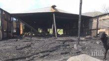 Пожар изпепели овчарник със 100 агнета