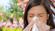 Как да спрем пролетните алергии без хапчета