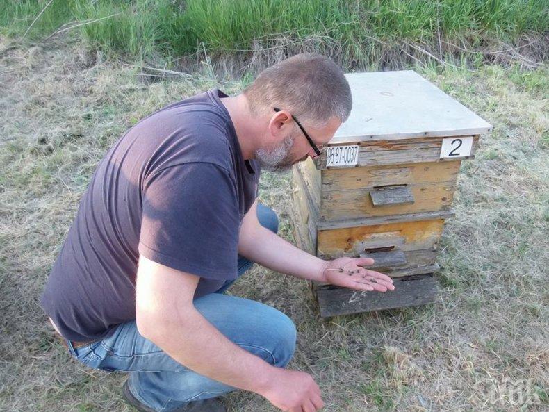 Пчелари готвят блокада на пътя Плевен-София