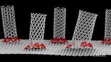 ПРОБИВ: Учени създадоха уникален наноматериал убиец на бактерии