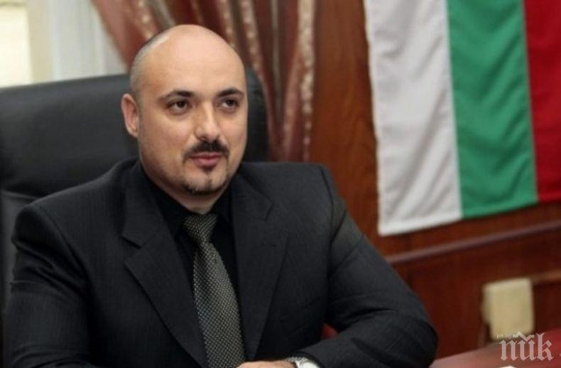 ВМРО с призив към министър Порожанов: Спрете мора над пчелите